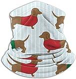 dfegyfr Lustige Dackel-Hals-Gamaschen-Gesichts-Bandana-Maske für Staub-Wind-UV-Sonnenschutz