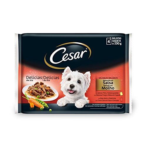 Cesar – Die Rezepte-Kampagne ,4 x 100 g (13er Packug)