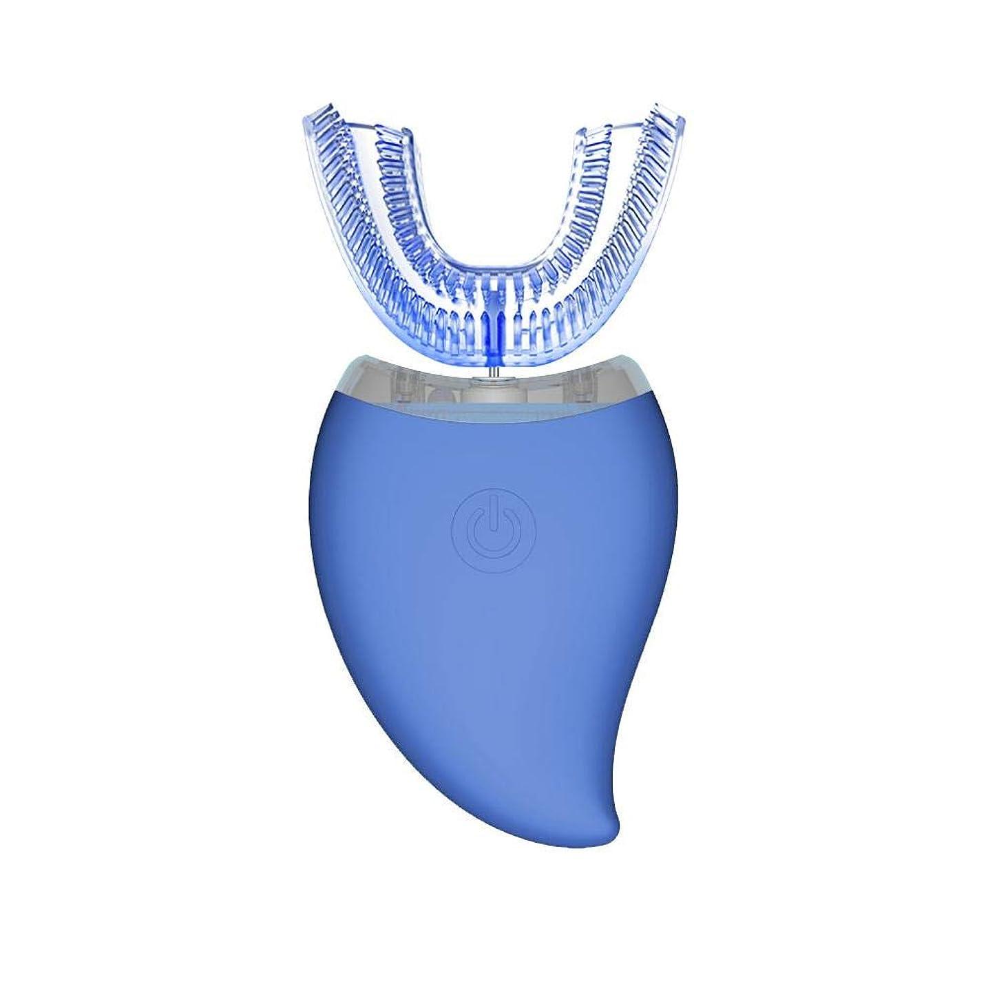 起訴する要塞期待して自動歯ブラシ 怠け者歯ブラシ ナノブルレー 電動 U型 超音波 専門360°全方位 3段調節 15秒に細菌清浄 IPX7レベル防水 自動 歯ブラシ