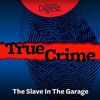 The Slave in the Garage audiobook cover art