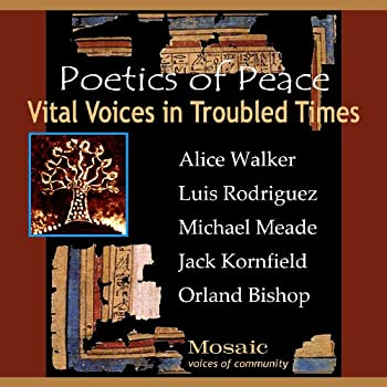 Vital Voices in Troubled Times 0971601151 Book Cover
