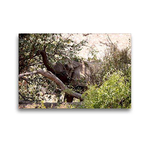 CALVENDO Premium Textil-Leinwand 45 x 30 cm Quer-Format Futter vom Baum. Jumbo - Auf den Spuren der Elefanten in Namibia, Leinwanddruck von Walter Imhof