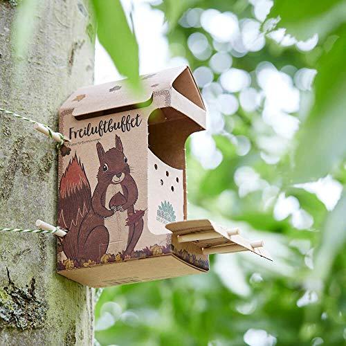 Die Stadtgärtner | Freiluftbuffet für Eichhörnchen | 200 Gramm schmackhaftes Hörnchenfutter in Einer speziell für Eichhörnchen entwickelten Futterstelle aus Naturkarton