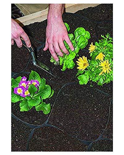 GardenPODS - Rejilla de jardín cuadrada: Amazon.es: Hogar