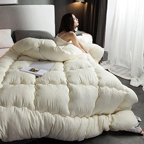 QQDE DW&HX Chaud d'Hiver épais édredons Double climatisation Quilts-Beige 220x240cm(87x94inch)