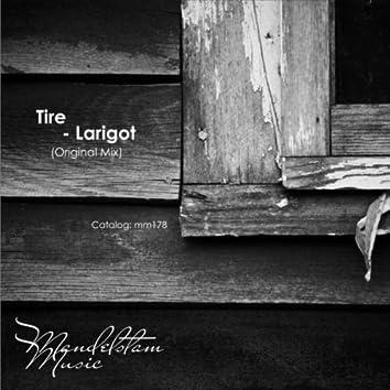 Larigot