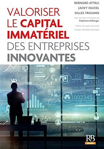 Valoriser le capital immatériel des entreprises innovantes (Les essentiels de la banque et de la finance)