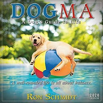 Dogma 2020 Mini Wall Calendar  A Dog's Guide to Life
