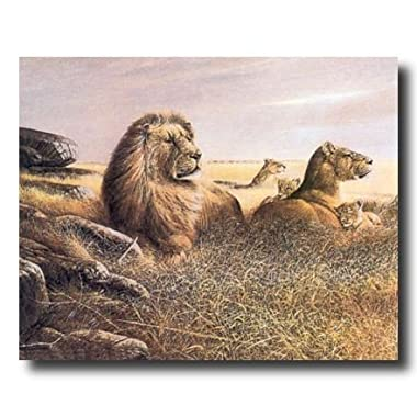 African Lion Savannah Pride Animal Wildlife Picture Art Print