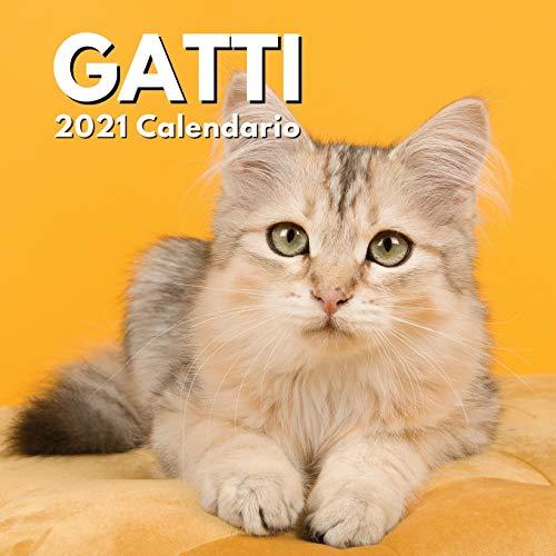 Calendario Gatti 2021: Regalo Amante Dei Gatti