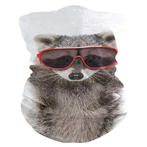Máscara de tela para mujer, pañuelos multifuncionales, patrón de costura, unisex, rojo, gafas de sol, mapache, inteligente, patrón de tela impreso, para hombres y mujeres al aire libre, diadema para la cabeza de remolque facial