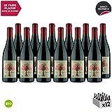 Beaumes de Venise Cuvée Hespéria Rouge 2018 - Bio - Maison Pascal - Vin AOC Rouge de la Vallée du Rhône - Cépages Syrah, Grenache - Lot de 12x75cl