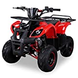 Kinder Quad S-8 Farmer 125 cc Motor Miniquad 125 ccm Toronto (Rot)