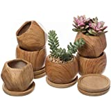 T4U 2.5 Inch Succulent Garden Pot with Bamboo Tray, Small Ceramic Windowsill Plant Pot Cactus Herb Planter for Home and Office Decoration Birthday Wedding Christmas Gift Pack of 6