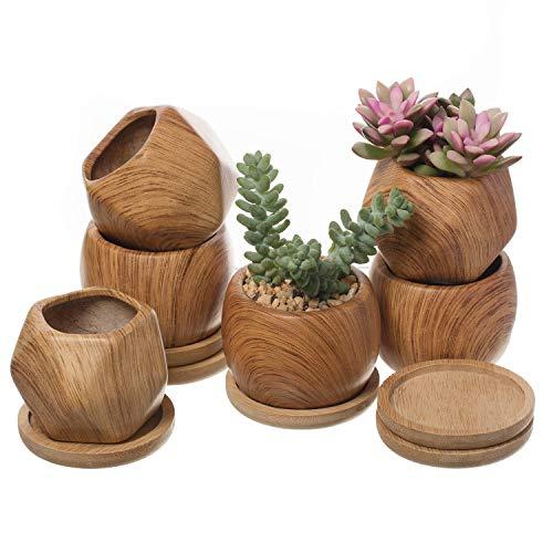 T4U 8cm Gemusterte Keramik Sukkulenten Töpfe mit Untersetzer 6er-Set, Klein Mini Blumentopf Übertopf für Kakteen Moos Zimmerpflanzen, Holz Sammlung