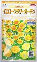 イエローフラワーガーデン・花絵の具