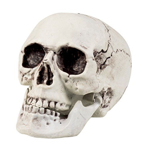 Boland, 74362- Calavera decorativa con mandíbula abatible, blanco