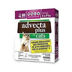 professional Advecta Plus flea press for small cats 4 months storage