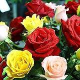 Yumhouse Semillas de Flores para Jardin,Colorful Rose Seeds, Four Seasons, Easy-to-Live Indoor and Outdoor-Mix_100 Capsules,Semillas de Flores Exterior trepadoras