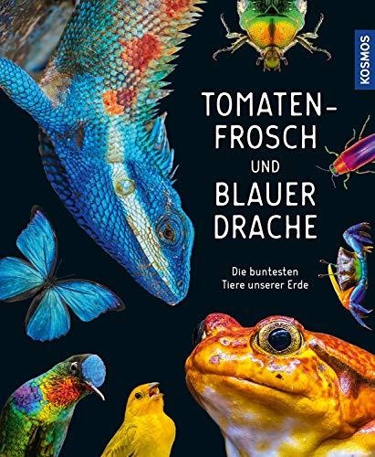 Tomatenfrosch und blauer Drache: Die buntesten Tiere unserer Erde