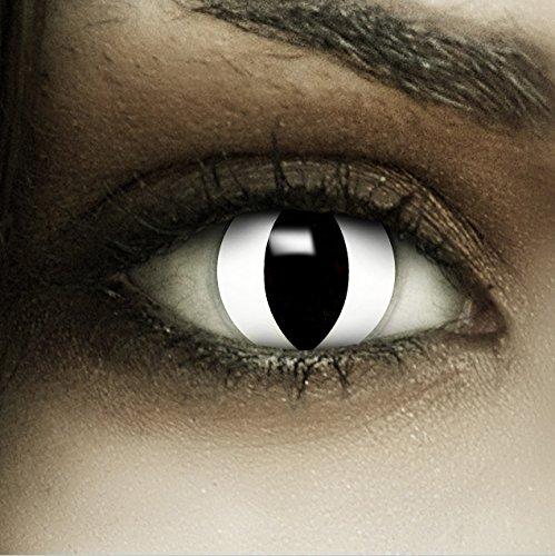 Farbige Kontaktlinsen ohne Stärke Weiße Katze + Kunstblut Kapseln + Kontaktlinsenbehälter, weich ohne Sehstaerke in weiß, 1 Paar Linsen (2 Stück)