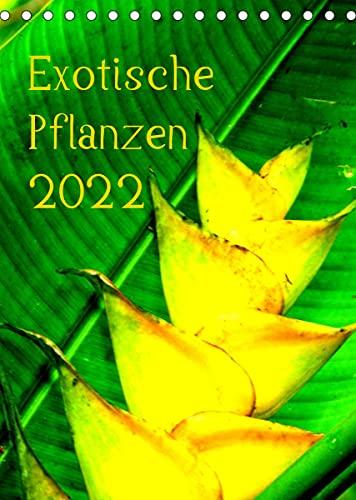 Exotische Pflanzen (Tischkalender 2022 DIN A5 hoch)