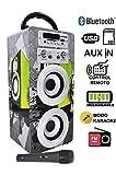 Dynasonic - Enceinte Bluetooth Portable karaoké 10W, 1 Micro inclu, Radio FM,...
