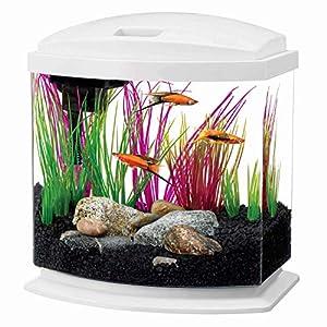 Aqueon LED MiniBow Aquarium Starter Kit with LED Lighting  2.5 Gallon  White