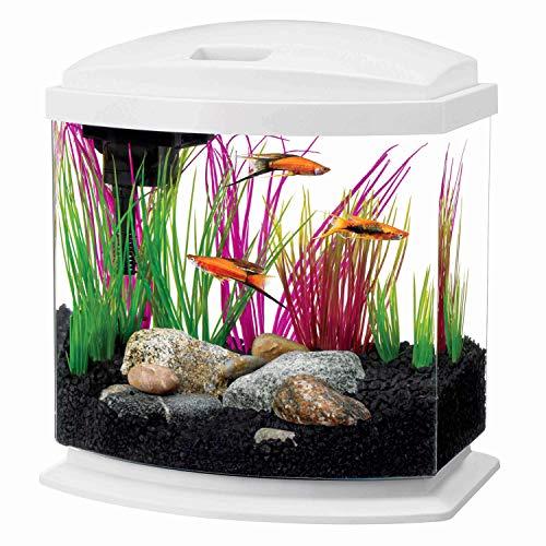 Aqueon LED MiniBow Aquarium Kit, White, 2.5 Gallons