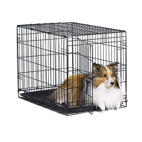 """New World 30"""" Folding Metal Dog Crate, Includes Leak-Proof Plastic Tray, Dog Crate Measures 30 L x 19 W x 21 H Inches, for Medium Dog Breeds"""