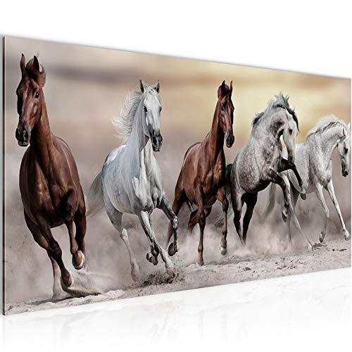 Bilder Pferde Wandbild Vlies - Leinwand Bild XXL Format Wandbilder Wohnzimmer Wohnung Deko Kunstdrucke Braun 1 Teilig - MADE IN GERMANY - Fertig zum Aufhängen 014112a