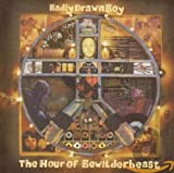 Songtexte von Badly Drawn Boy - The Hour of Bewilderbeast
