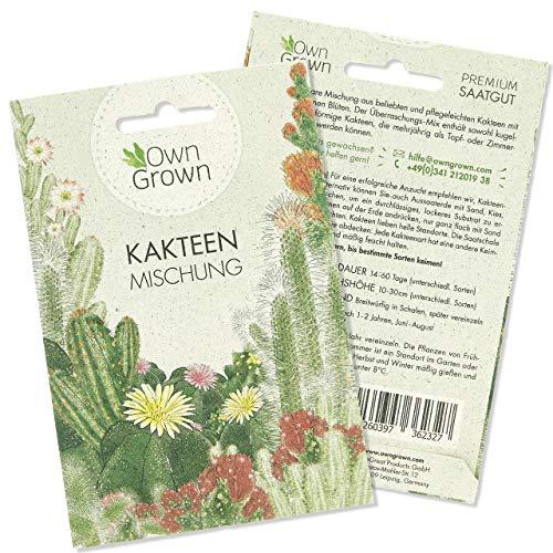 Sukkulenten Samen Mischung: Bunter Kakteen Samen Mix für die Kaktus Pflanzen Aufzucht - Kakteen Saatgut Mischung mit Zimmerpflanzen Samen - Sukkulenten echte Pflanzen - Mini Kakteen Set von OwnGrown