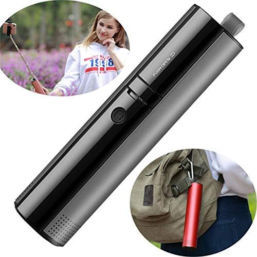 WYGC Speakers Speaker Bluetooth Senza Fili Selfie Stick 4 in 1 Subwoofer Portatile 3D Bass Sound Altoparlante Power Bank Hands Free Supporto TF Card per Viaggi, Feste e Camper (Colore : Gray)