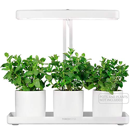 TORCHSTAR LED Indoor Garden Kit, Herb and Kitchen Garden Grow Light, Auto-Timer Function, 24V Low Voltage, Height Adjustable CRI 95 Real Color for Plant Enthusiasts, Rosemary, Plant Growing System