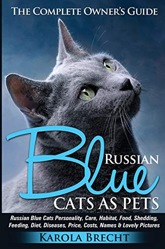 Russian Blue Cats as Pets: Personality, care, habitat, feeding, shedding, diet, diseases, price, costs, names & lovely pictures. Russian Blue Cats complete owner's guide!