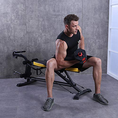 ZENOVA Adjustable Weight Bench, Flat Incline Decline Multistage Exercise Workout Bench with Leg Extension and Curl,Training Bench for Full Body Workout