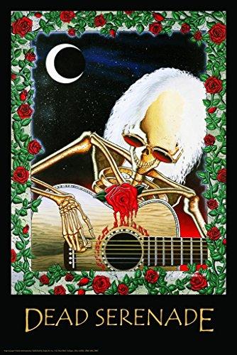 Dead Serenade - Grateful Dead 24'x36' Art Print Poster