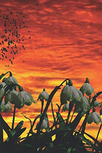 Schneeglöckchen Notizbuch: Frühlingsanfang, Märzbecher bei Abendrot | Notizbuch / Tagebuch mit 120 Seiten