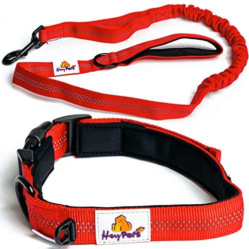 Hey Pets® Hundehalsband und Hundeleine Set,Flexible Führleine,rote Nylon-Leine weich gepolstert,bissfeste Hundeleine mit Anti-Zug Ruckdämpfer,Trainingsleine für Hunde mit Dämpfer,Hunde-Leine