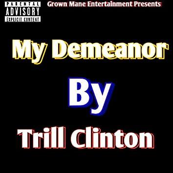 My Demeanor
