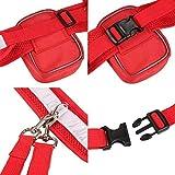 CUGLB Hände Frei Joggingleine mit Bauchgurt, Elastische Hundeleine Hands Free Leine Zubehör für Hunde Hundeleinen Set Reflektierende Bauchgurt mit 2 or 3 Tasche Taille (Rot) - 5