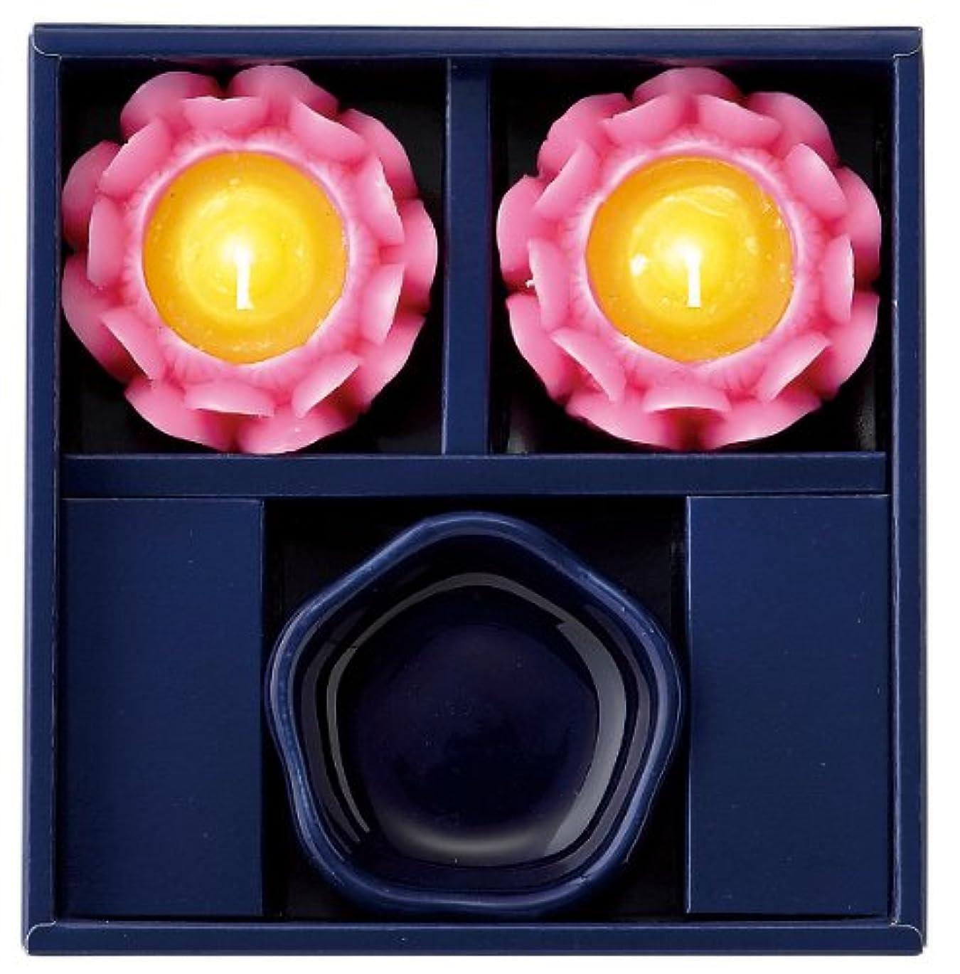 中断来て凍るマルエス 蓮の花進物セット ピンク