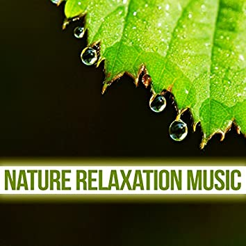 Nature Relaxation Music – Soft Sounds to Relax, Nature Waves, Singing of Birds, Water Relaxation