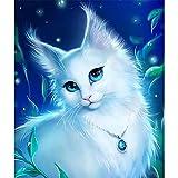 DIY Diamond Painting Kit Completo,Cuadros Diamantes 5d,Pintura Diamante Kit,Diamante Pintura Kits para Niños Adultos Punto De Cruz Bordado Art Craft Decor Dibujos animados de gato Square Drill,50x70cm