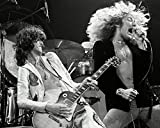 bucraft Jimmy Page and Robert Plant of LED...