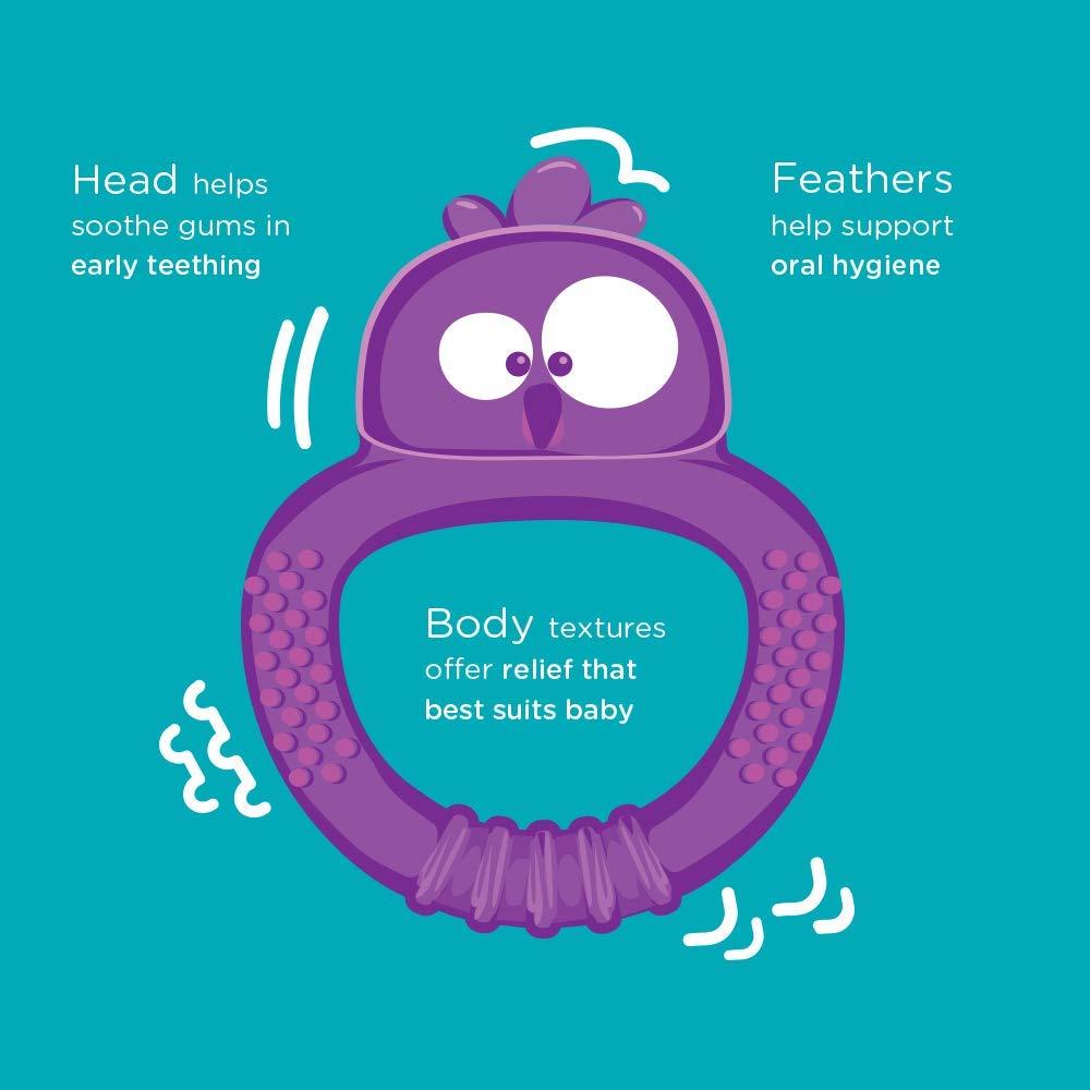 Tommee Tippee Tommee Tippee Kalani Maxi Teether Multi Sensory Teething Toy