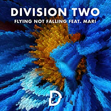 Flying Not Falling