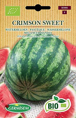 Germisem Wassermelone CRIMSON SWEET, ECBIO5006