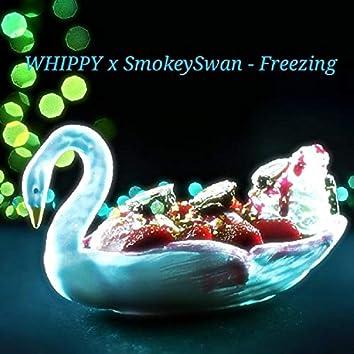 Freezing (feat. SmokeySwan)